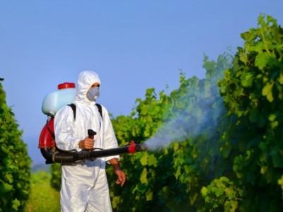 inail-uso-in-sicurezza-dei-prodotti-fitosanitari-schede-tecnico-informative